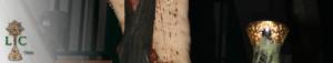 Lignum Crucis